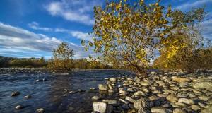 Vigevano-Malpensa: Parco del Ticino ribadisce il NO al progetto Anas