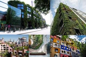 tetti verdi collage