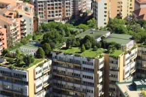tetti-verdi-obbligatori-per-legge-5-420x280
