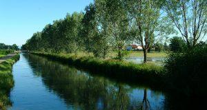 Parco del Ticino: Beltrami si dimetta