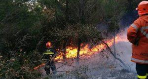 Emergenza incendi, il M5S ottiene l'indagine