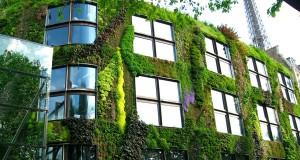 Stati generali del Verde Urbano, il punto sulla legge