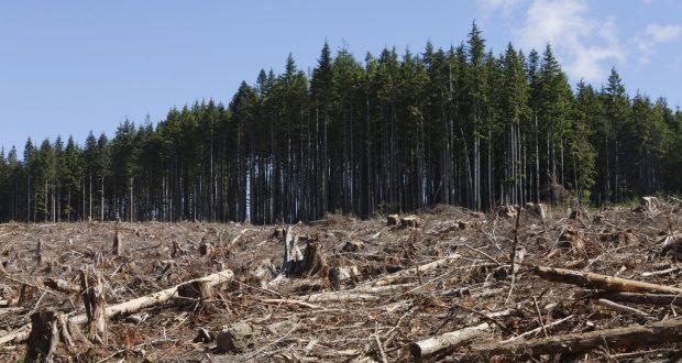 Non esistono modelli economici e benessere collettivo, laddove non vi è tutela dell'ambiente e della salute