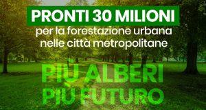 Più alberi per il futuro: 30 milioni per la forestazione urbana