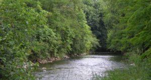 Vasca di laminazione Molgora a Bussero, Gorgonzola e Pessano: al momento tutto fermo